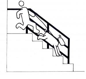 kutyafuttában a lépcsőn